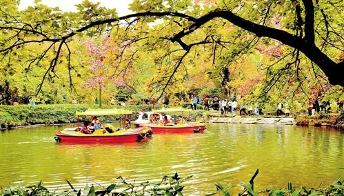 苏州秋色 拍摄于江苏苏州吴中区木渎镇天平山风景区